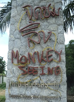 MonkeySeeing-4